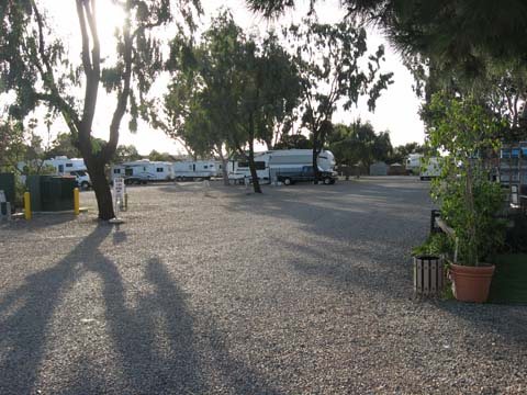 Surf & Turf RV Park - Home